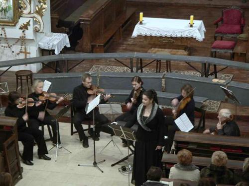 Malý smyčcový orchestr